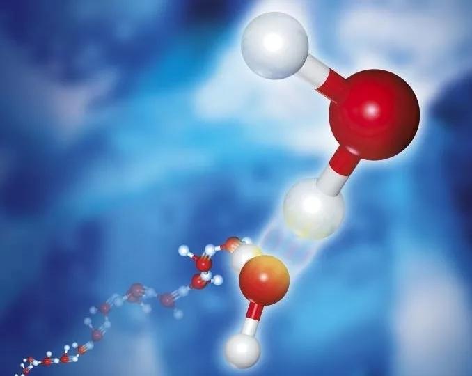 【华天推荐】双组份聚氨酯预聚体---A55/B55